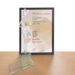 Erneut Golden Pixel Award für Grasl FairPrint